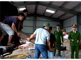 Công an Quảng Bình bắt giữ 4 xe ô tô vận chuyển gỗ lậu