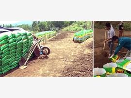 Phát hiện phân bón được sản xuất bằng... đất, cát