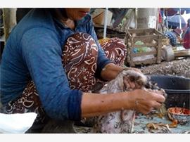 Quảng Nam: Vẫn khó kiểm soát vệ sinh an toàn thực phẩm