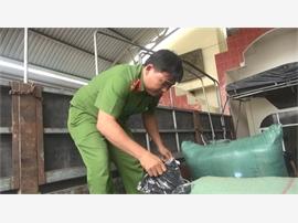Phú Yên: Đấu tranh chống hàng lậu, hàng giả và gian lận thương mại vào dịp Tết nguyên đán Mậu Tuất